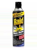 Raid Wasp and Hornet Killer